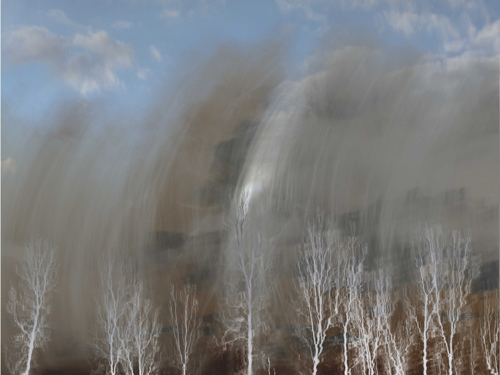 Abstract multiple exposure and camera movement image of trees.